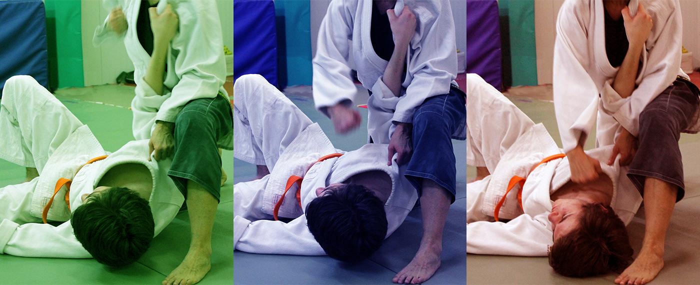 Il Ju Jitsu è...