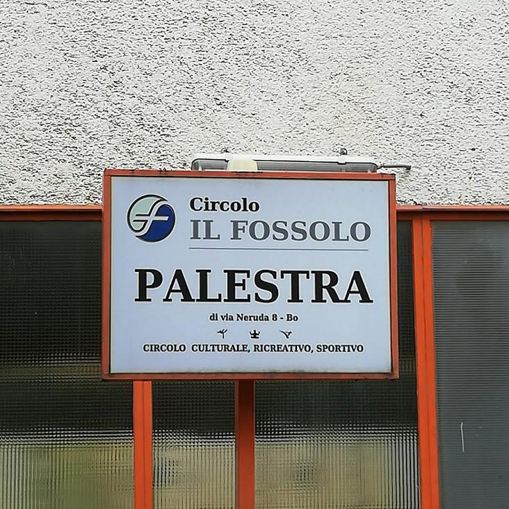 Palestra corso adulti Ju Jitsu Team Bologna